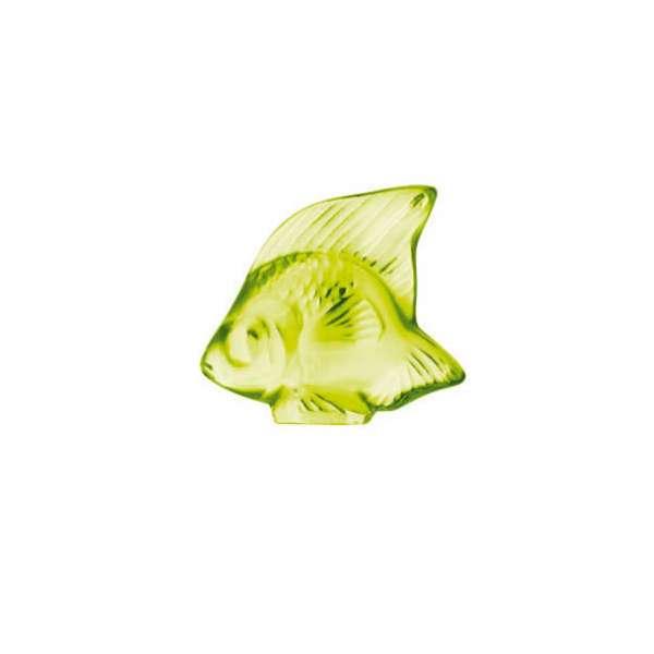 Fisch anis 'Poisson'