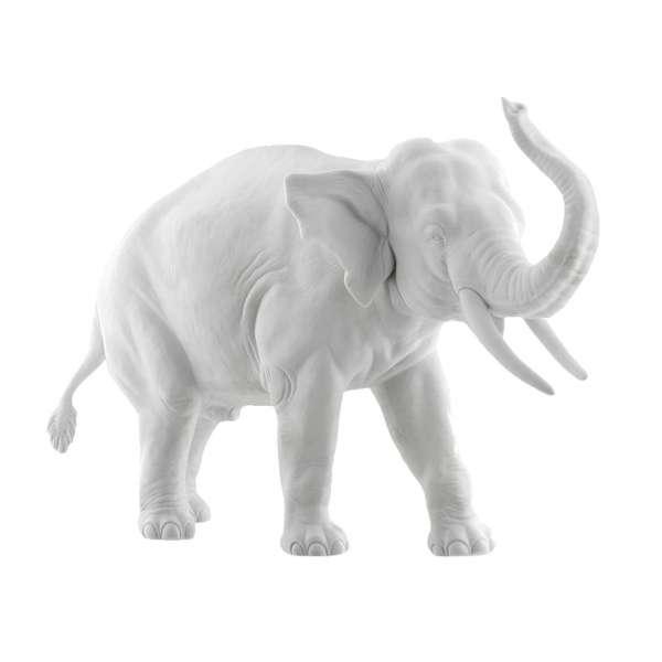 Elefant Edward Rüssel aufwärts