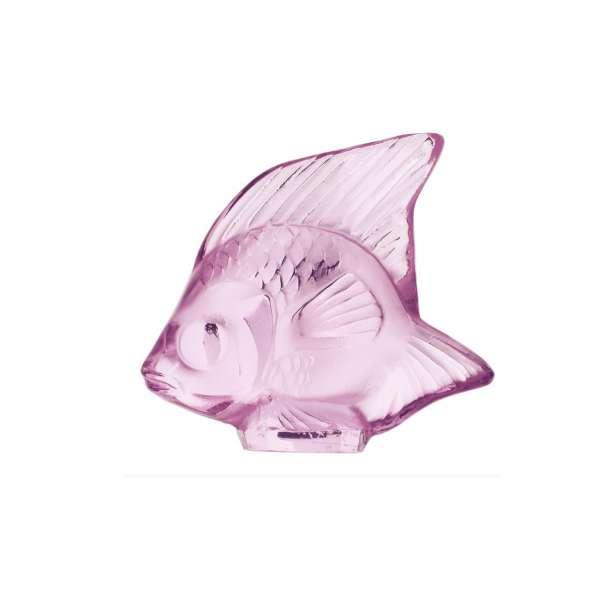 Fisch rose 'Poisson'