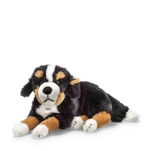 Sennenhund Berner Senni 45 cm, braun
