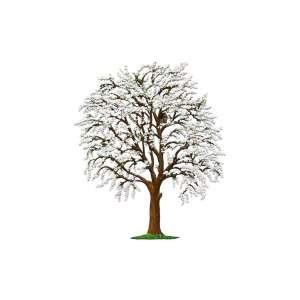 Blütenbaum 15x12 cm