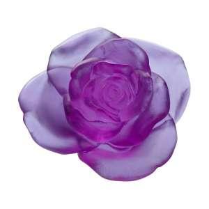 Rose ultraviolett 11 cm