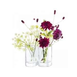 Vasen Set 12 cm klar