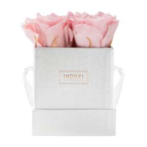 Flowerbox small, blush rose
