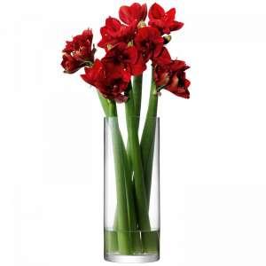 Vase 50x20 cm klar