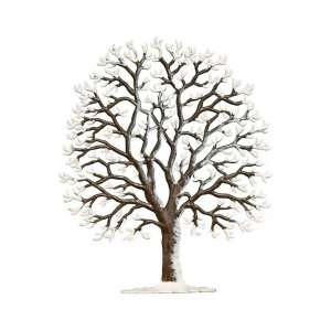 Winterkastanie 12x10 cm