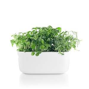 Selbstbewässernder Herb-Organiser, weiß