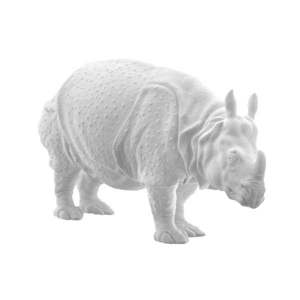 Rhinozeros Clara