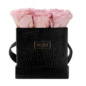 Flowerbox medium, blush rose