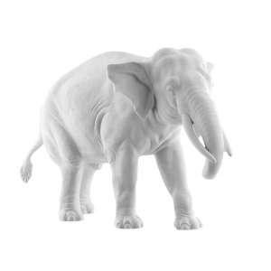 Elefant Djamila Rüssel abwärts
