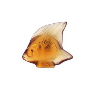 Fisch bernstein 'Poisson'
