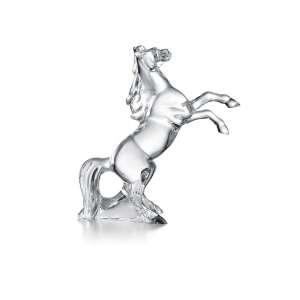 Pferd Marengo klar